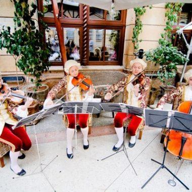 живая музыка в одессе, струнные инструменты, музыка на праздник в одессе