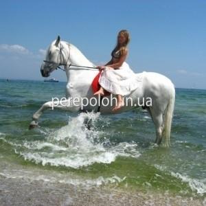 Фотосессия на лошади, Одесса