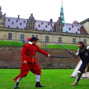 Рыцарское фехтование